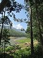 Views around Munnar, Kerala (75).jpg