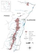 Prix hectare vigne languedoc