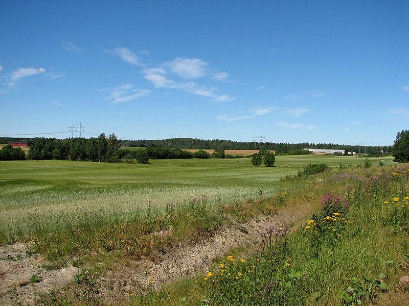 Field in Viinikkala, Vantaa.