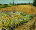 Vincent van Gogh - Wheatfield - Google Art Project.jpg