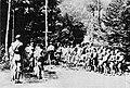 Volčiči-Skavti v taboru pri Mozirju (2).jpg