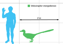 What would you do if you had access to a hyper-realistic robot velociraptor? 220px-Vraptor-scale
