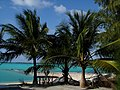 Wake Island Lagoon Paradise by Matthew Piatkowski.jpg