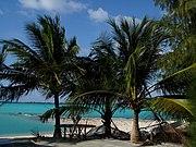 Wake Island Lagoon Paradise by Matthew Piatkowski