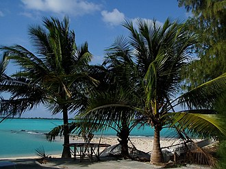 Wake Island - Palm trees at Wake Island's lagoon