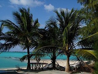 Wake Island - Palm trees at Wake Island's lagoon