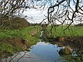 Walcot Dyke. - geograph.org.uk - 87213.jpg