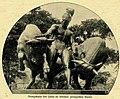 Walter Levy - Jason-Gruppe im Berliner Zoologischen Garten, 1911.jpg