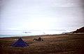 Ward Hunt Island, Ice Shelf 01.jpg