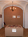 Warszawa - Muzeum Literatury - Pimpus Sadelko na 102 - 2012 (5).JPG