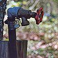 Water spigot.jpg