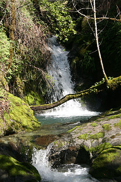 Waterfall at Galbreath.jpg