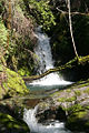 Waterfall at Galbreath.jpg