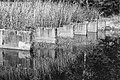 Waterloopbos. Onderzoek afsluiting van zeegaten Deltawerken M995 20.jpg
