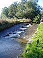 Weir on the River Ystrad - geograph.org.uk - 274705.jpg