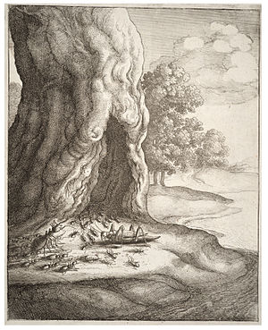 Thomas Fisher Rare Book Library - Image: Wenceslas Hollar The ant and the grasshopper (State 2)