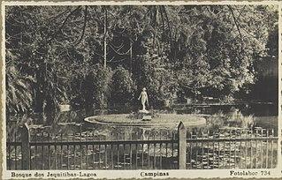 Bosque dos Jequitibas - Lagoa - Campinas