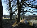 West Highland Way Near Dumgoyach - geograph.org.uk - 80362.jpg