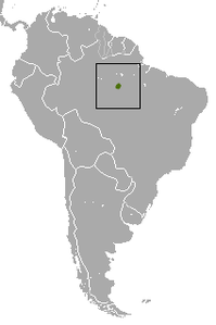 White Marmoset area.png