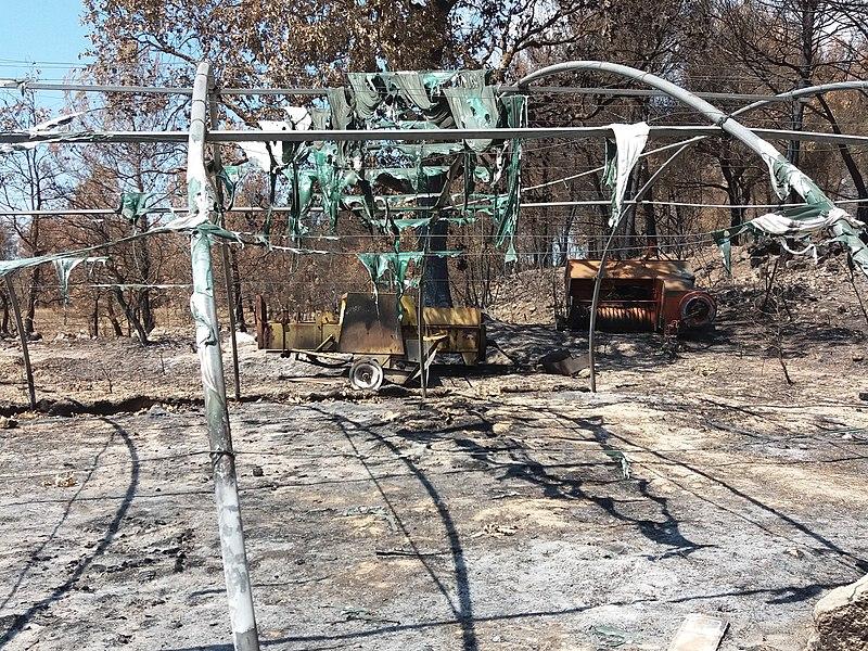 Un mois après l'incendie de la mi-juillet 2017 qui a touché la commune de Saint-Cannat (France)