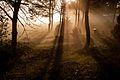 Wschód słońca w Rybakach.jpg