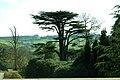 Yorkshire Sculpture Park - geograph.org.uk - 397888.jpg