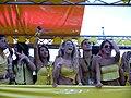 Zürich Street Parade 2011 011.jpg