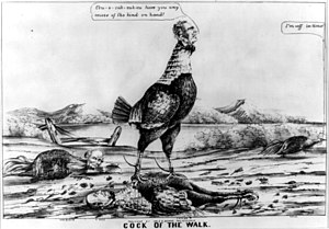 "United States presidential election, 1848 - ""Cock of the walk"" - Zachary Taylor as victor"