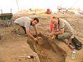 Çatalhöyük 2006 IMG 2234 (207473841).jpg