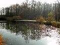 Étang forestier du bois des mouilles, réserve biologique forestière de Bernex - panoramio (5).jpg