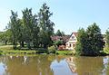 Černovice (DO), pond.jpg