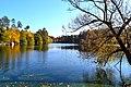 Барви осені біля водоємів Пущі.jpg