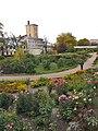 Ботанический сад РАН, лето 2010, цветник, оранжереи, библиотека (вид с крыши оранжереи).jpg