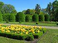 Ботанічний сад ім. М.Гришка IMG 8996.jpg
