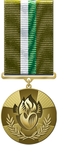 "Decoration of the President of Ukraine ""For Humanitarian Participation in the Anti-Terrorist Operation""."