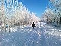 Город Турткуль. Зима, улица Победы.jpg