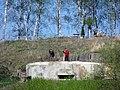 ДОТ около кладбища. Полоцкий район. Bunker near the cemetery. Polotsk district. - panoramio.jpg