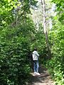Дендрологічний парк 12.jpg