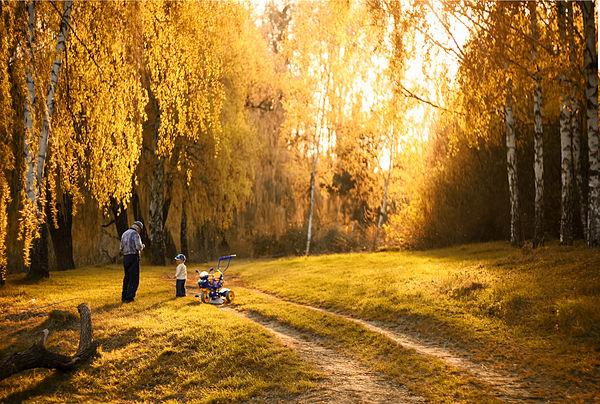 Полтавський міський парк, © Олександр Яловега, CC-BY-SA 3.0
