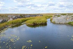 Kartalinsky District - Shiryaev Creek, Kartalinsky District