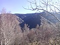 По пътя за хижа Хубавец, резерват Стара река... 34.jpg