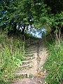 Прыступкі да пешаходнага моста цераз Ваку. Steps to pedestrian bridge over the Vokė river - panoramio (2).jpg