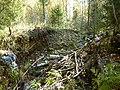 Разрушенный мост - panoramio (4).jpg