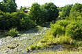 Ручей - Stream - panoramio (1).jpg