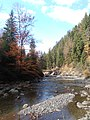 Річка Прутець Чемигівський 1. IMG.jpg