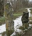 Скіфський стан на Хортиці. Кам'яні баби з Музею кам'яних витворів.jpg
