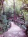 Смоларски водопад 24.jpg