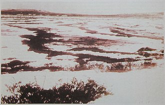 Tunguska event - Topi Tunguski, around the area where it fell. This photo is from the magazine Around the World, 1931. The original photo was taken between 1927 and 1930 (presumably, no later than 14 September 1930).