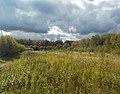 Широколиственный лес Подольского лесничества 04.jpg