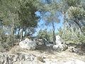 פסל ביער צרעה 11.JPG